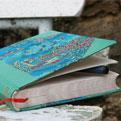la Salamandre - Baillestavy Frankrijk :Cursus Creatief schrijven|boek bank