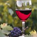la Salamandre - Baillestavy Frankrijk :Op Maat|glas wijn