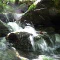 la Salamandre - Baillestavy Frankrijk :Cursus Yoga - Wandelen|water